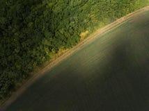 Lucht groen gebied royalty-vrije stock foto's