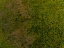 Lucht groen gebied royalty-vrije stock foto