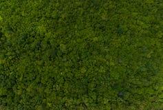 Lucht groen gebied royalty-vrije stock afbeelding