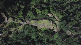 Lucht het stijgen hommelmening van de Verloren Stad, archeologische plaats in Colombia stock footage