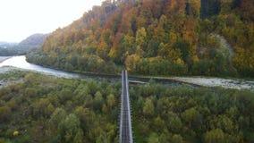 Lucht, hoogste mening van Hommel: Spoorweg door de rivier in het bos stock video