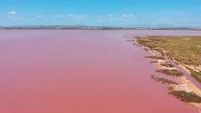 Lucht Mening De zoute vijvers van de zeewaterverdamping met roze kleur stock videobeelden