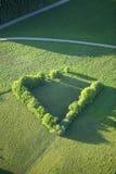 Lucht Mening: Geïsoleerdew bomen op een gebied Stock Afbeelding