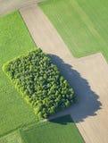 Lucht Mening: Geïsoleerdp hout op gebieden royalty-vrije stock afbeelding