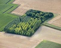 Lucht Mening: geïsoleerdr hout op gebieden stock fotografie