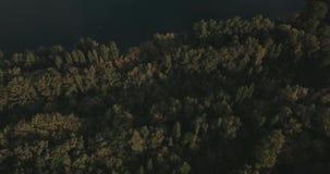 Lucht Mening Het vliegen over het mooie meer Zonnige dag Luchtcameraschot stock videobeelden