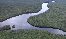 Lucht mening van de rivier van Amazonië Royalty-vrije Stock Foto
