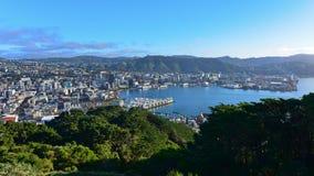 Lucht Mening van de Stad van Wellington Royalty-vrije Stock Afbeelding