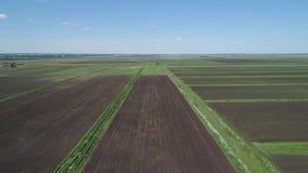 Lucht Mening van Landbouwgrond stock footage