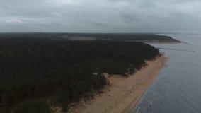 Lucht Mooie hommel die van overzees met golven tijdens een saai somber weer met stormachtige hierboven wind en regen wordt gescho stock videobeelden