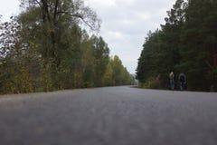 Lucht van de pijnboom de bosberg royalty-vrije stock foto's