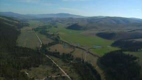 Lucht wijd geschoten van groen vallei en bos stock videobeelden