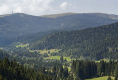 Lucht Zwart Boslandschap royalty-vrije stock foto