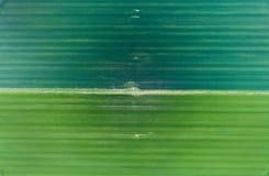 Luchtbeeld van groene gebieden Royalty-vrije Stock Afbeeldingen