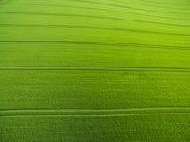 Luchtbeeld van weelderige ingediend groen Royalty-vrije Stock Fotografie