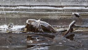 Luchtbellensmelting in het ijs Royalty-vrije Stock Foto