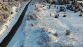 Luchtdie snow-covered bomen op hommel worden geschoten Lengte van een perfect die landschap van de de winterfee met een pijnboomb