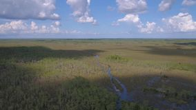 Luchtflorida Everglades Juli 2017 Sunny Day 4K inspireert 2 stock video