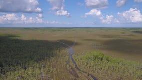 Luchtflorida Everglades Juli 2017 Sunny Day 4K inspireert 2 stock footage