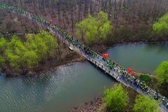 Luchtfoto van drie openluchtsportenfestival van het berg bospark Royalty-vrije Stock Foto's