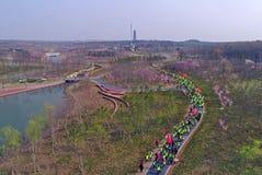 Luchtfoto van drie openluchtsportenfestival van het berg bospark Stock Foto's