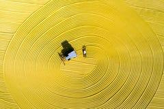 Luchtfoto van padieoogst in landelijk China Stock Foto's