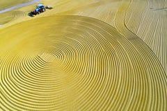 Luchtfoto van padieoogst in landelijk China Stock Afbeeldingen