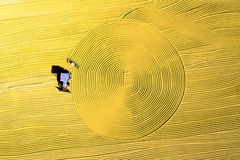 Luchtfoto van padieoogst in landelijk China Royalty-vrije Stock Afbeelding