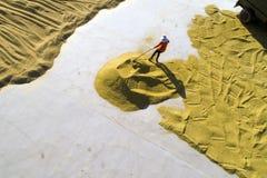 Luchtfoto van padieoogst in landelijk China Royalty-vrije Stock Foto's