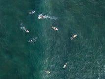 Luchtfoto van surfers op raad Royalty-vrije Stock Afbeeldingen
