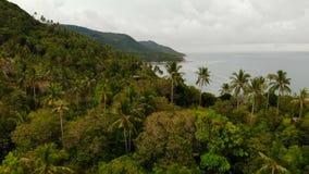 Luchthommel hoogste mening van exotische paradijs tropische kustklip met vulkanische die stenen met groene wildernis worden behan stock videobeelden