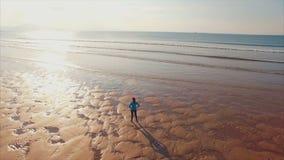Luchthommel van vrouw status bij kust op zonnige dag stock videobeelden