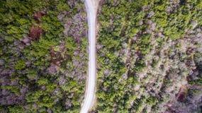 Luchthommelbeeld van een weg tussen bomen stock fotografie