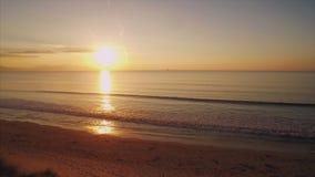 Luchthommellengte die van geschikte vrouw zich op zandduin bij strand tijdens zonsondergang bevinden stock videobeelden