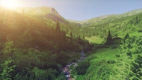 Luchthommelmening: majestueus berglandschap stock footage