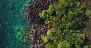 Luchthommelmening van een Tropische paradijskustlijn over een Caraïbisch eiland met Turkoois water en kleine golven die de rotsen stock videobeelden