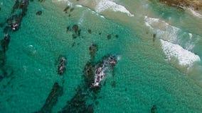 Luchthommelmening van overzees en kustlijn stock videobeelden