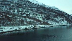 Luchthommelpanorama van fjord, bos en bergen Noorwegen stock footage