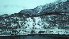Luchthommelpanorama van fjord, bos en bergen Noorwegen stock video