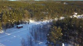 Luchthommelpanorama van traditionele huizen, bos en gebieden Noorwegen stock videobeelden