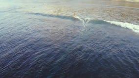 Luchthommelvideo van surfers op de oceaan bij zonsondergang en golf Aard, water, sporten, zonsondergang, golven, golf, hartstocht stock footage