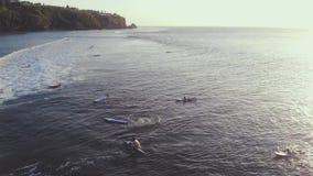Luchthommelvideo van surfers op de oceaan bij zonsondergang en golf Aard, water, sporten, zonsondergang, golven, golf, hartstocht stock video