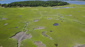 Luchtlengte van Cape Cod-de Habitat van het Moerasland stock video