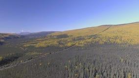 Luchtlengte van het seizoen van de de oliepijpleiding van Alaska in de herfst, Dalton Highway stock video