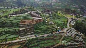 Luchtlengte van landbouwgrond met zendertoren stock footage