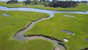 Luchtlengte van Marsh Habitat stock videobeelden
