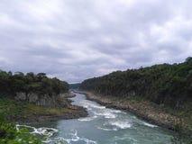 Luchtmening aan de rivier en de wildernissen van Iguazu royalty-vrije stock foto