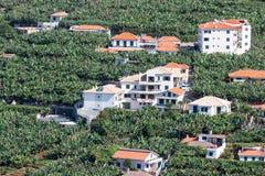 Luchtmening bij huizen en banaanaanplantingen bij het Eiland van Madera, Portugal Stock Fotografie
