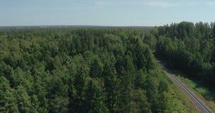 Luchtmening - bovenkanten van bosbomen en een spoorweg stock video