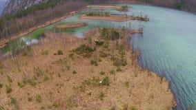 Luchtmening, die over het bos in de bergen in Oostenrijk, Hinterstoder vliegen stock video